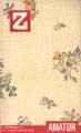 Z nr. 4-1999: Amatør