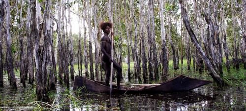 ten canoesstorreutsnitt