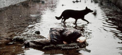 Stalker. Andrej Tarkovskij
