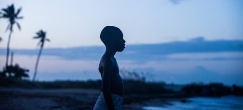 Moonlight (Barry Jenkins 2016) Foto: Selmer Media